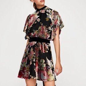 Zara Devore Velvet Mini Dress. XS